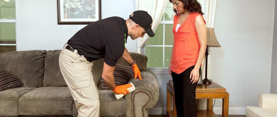 Southfield, MI carpet upholstery cleaning